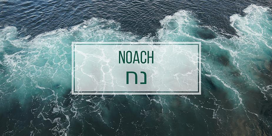 Paraszat Noach
