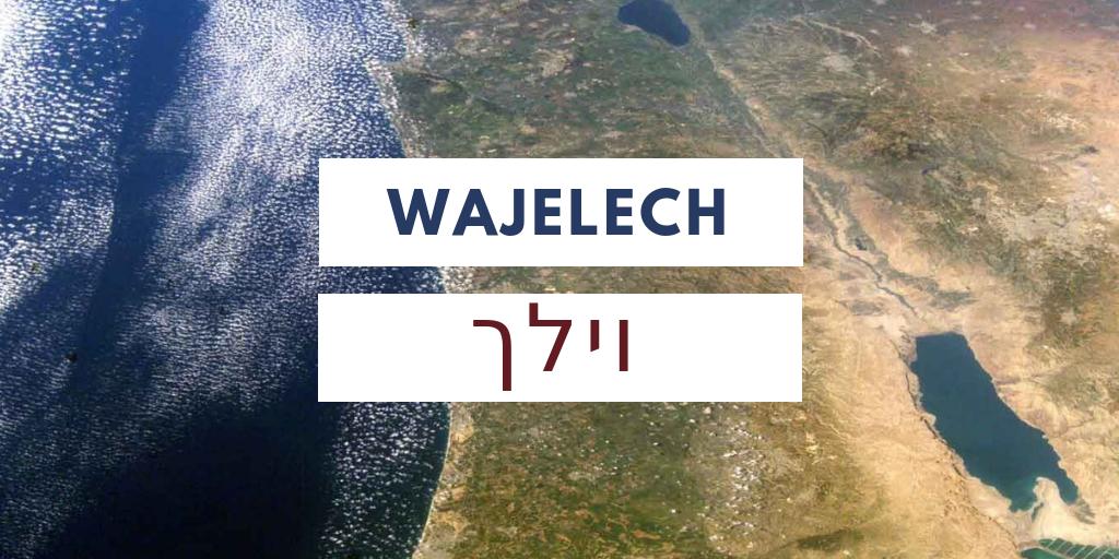 Paraszat Wajelech